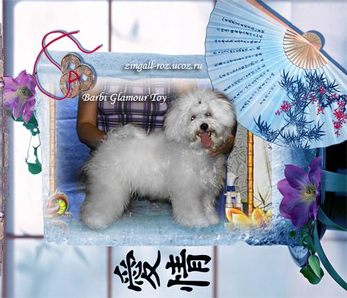 http://zingall-roz.ucoz.ru/_ld/2/293__Barbi_Glamour_.jpg